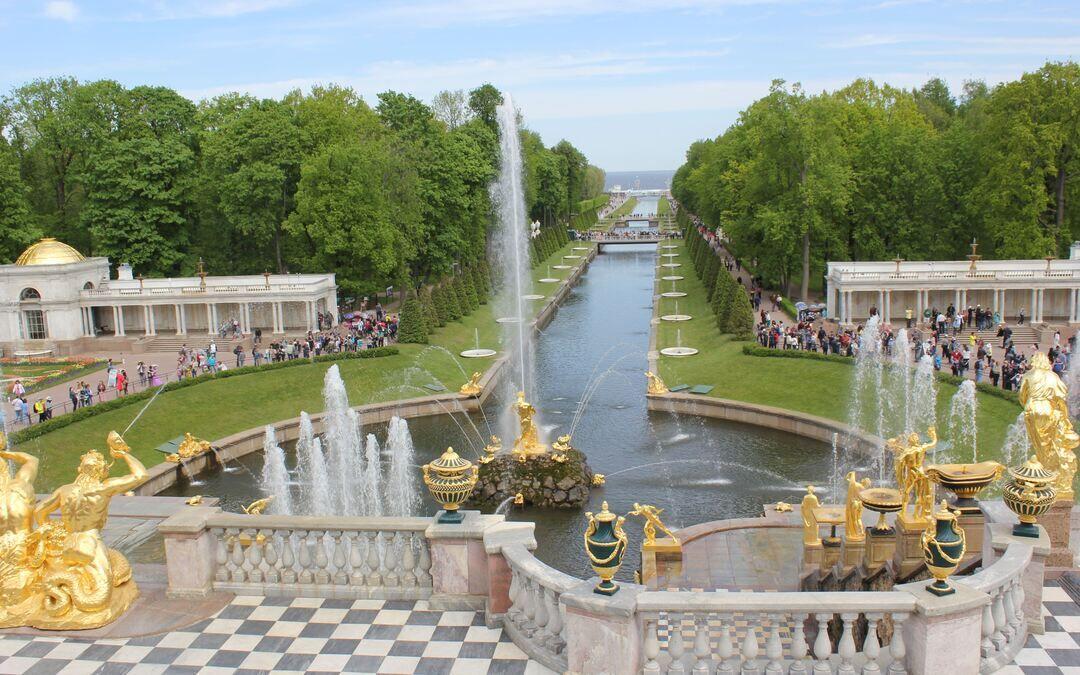 петергоф дворцово парковый фото ветка